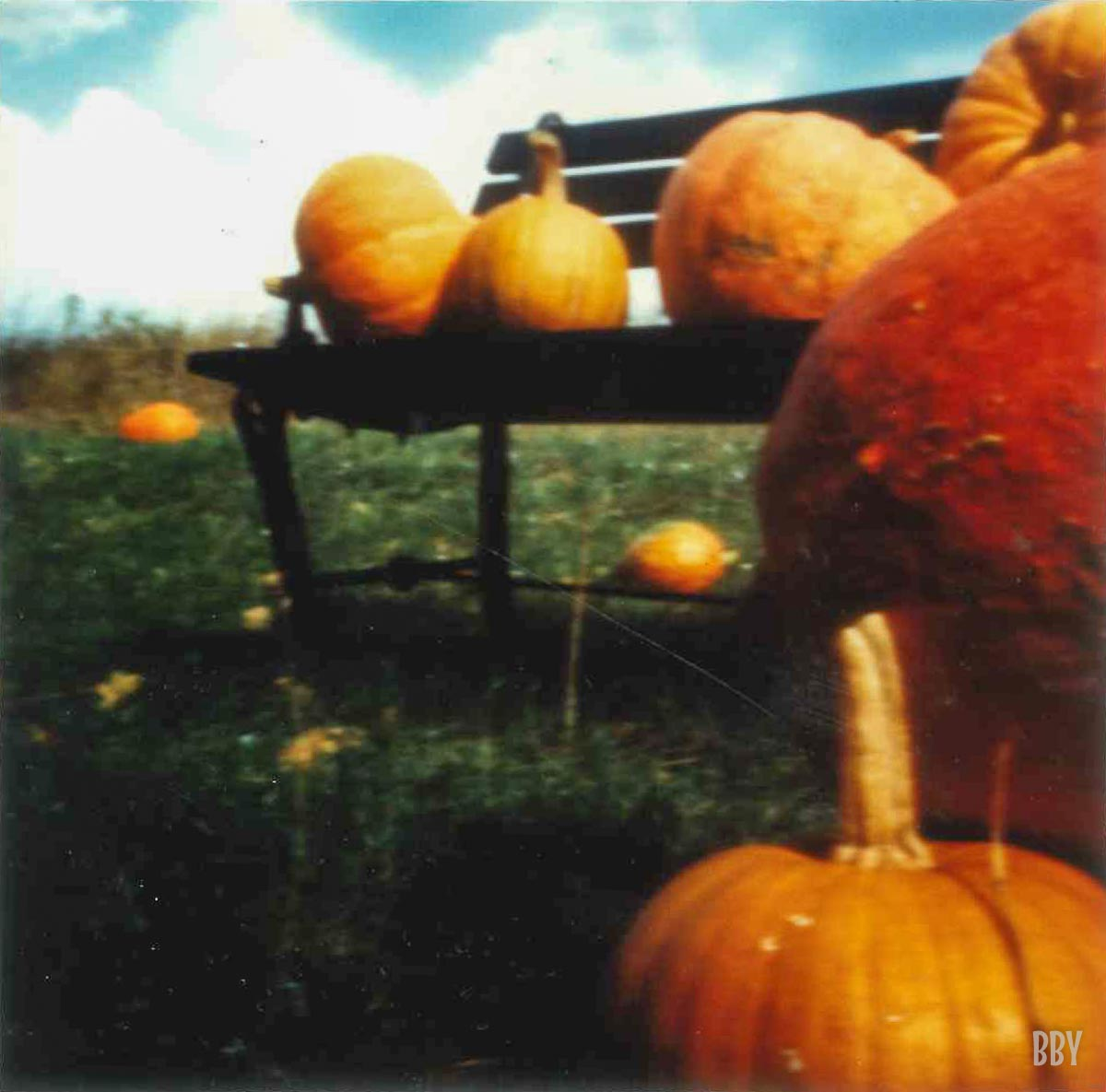 stenope, pinhole, slow photography, chambre noire, potiron, pumpkin, orange