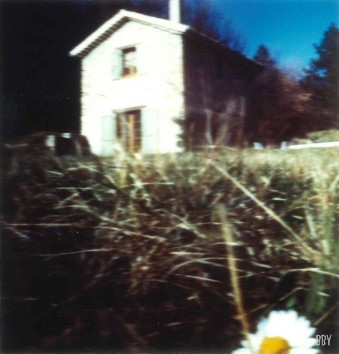 stenope, pinhole, slow photography, chambre noire, margueritte, daisy, maison