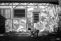 Ivry, 2021, Bisk, BiskLand, Totoro, graf, graffitti, street art, tag, tags