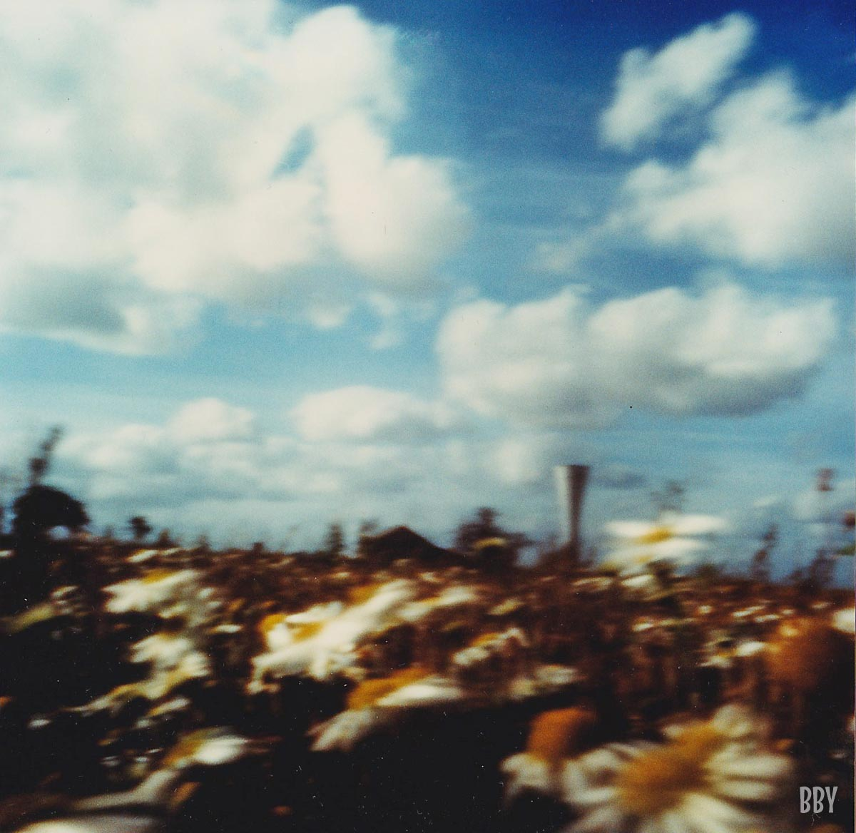 stenope, pinhole, slow photography, chambre noire, margueritte